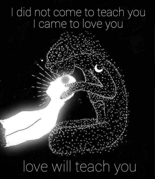 love will teach you